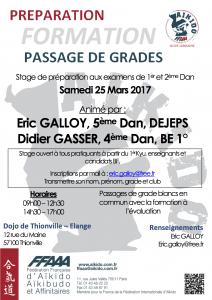 PREPARATION FORMATION PASSAGE DE GRADES 1èr et 2ème Dan: Eric Galloy, Didier Gasser @ Dojo de Thionville | Thionville | Grand Est | France