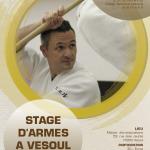 STAGE D'ARMES MICHEL ERB A VESOUL @ Maison des associations | Vesoul | Bourgogne Franche-Comté | France